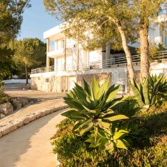 Beautiful garden Ibiza Villa