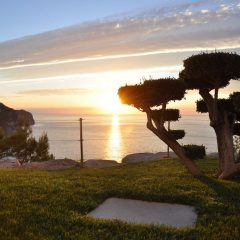 incredible Sunset Villa Ibiza t rent San Miguel