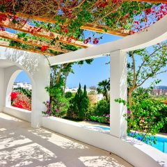 Beautiful garden view Ibiza villa