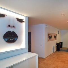 Kunst in Design Villa in Ibiza